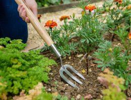 Hay un suministro enorme de herramientas para jardín, pero muy pocas de estas son necesarias. En este blog te guiamos por las más esenciales.